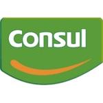 Assistência Técnica Especializada Consul