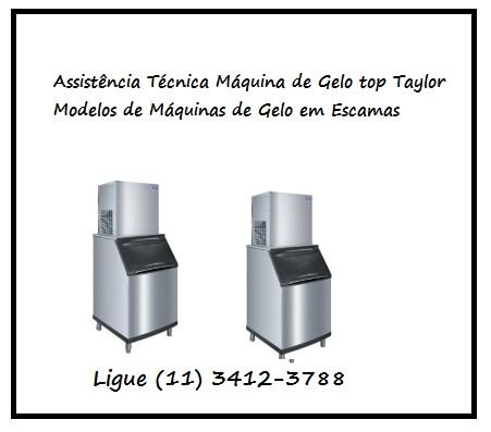 Assistência Técnica Máquina de Gelo em Escamas Top Taylor